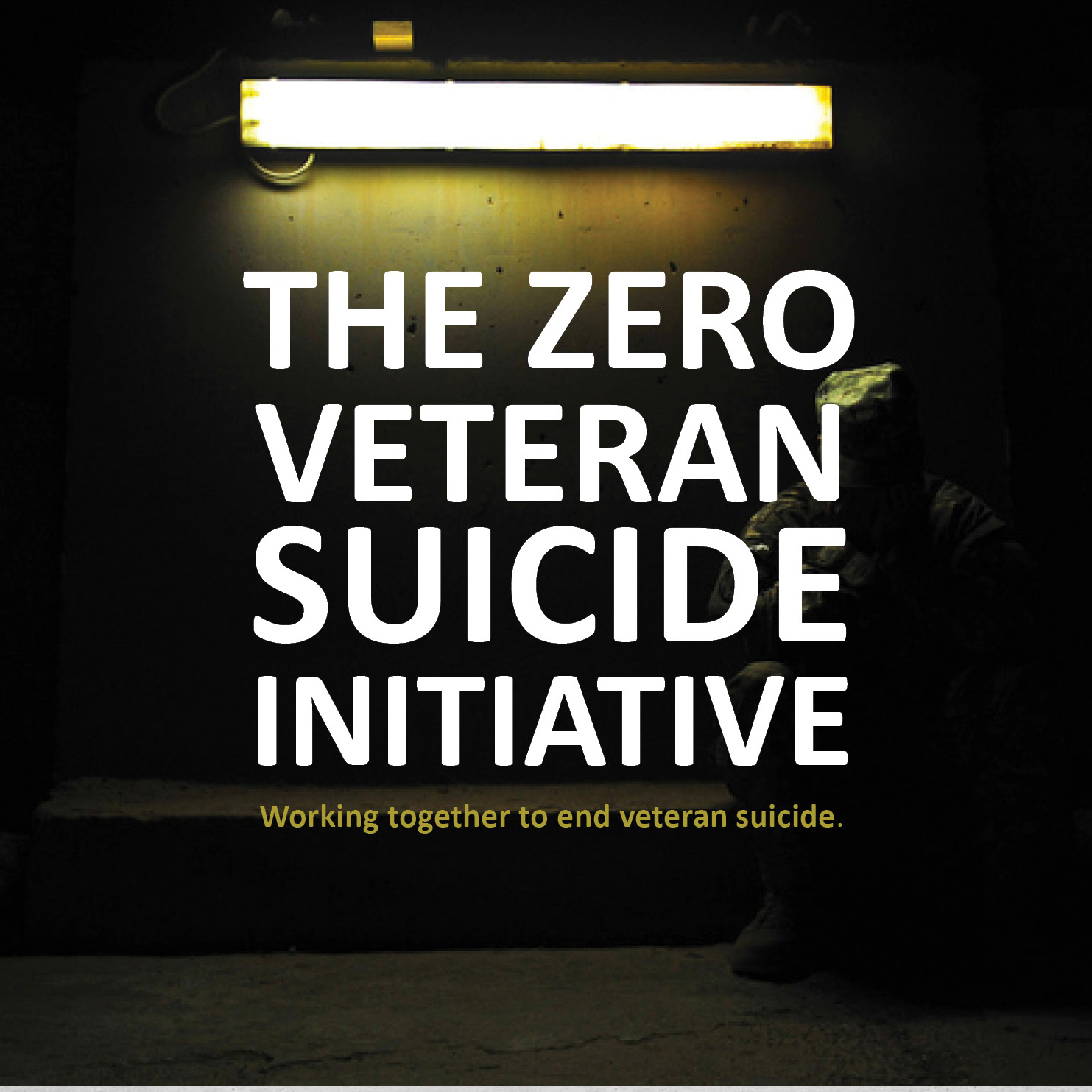 Veteran-Suicide-Initiative square.jpg